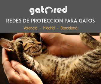Gatored - Redes de protección para gatos en Valencia - Barcelona - Madrid